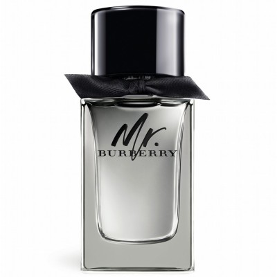 Burberry Mr.Burberry For Men 100ml (EDT)