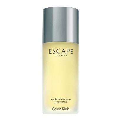 Calvin Klein Escape For Men 100ml (EDT)