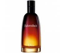 Christian Dior Fahrenheit For Men 100ml (EDT)