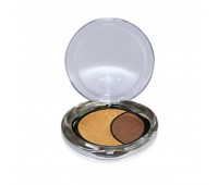 DMGM Studio Perfection Duo Eye Shadow Copper Haze  Mocha Frizz