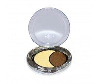 DMGM Studio Perfection Duo Eye Shadow Gold Frost Chocolate Silk